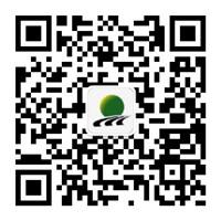 9手机现金足球马铃薯集团_副本.jpg